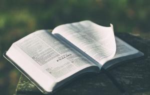 bible_reading_plans
